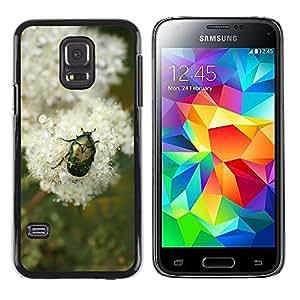 Print Motif Coque de protection Case Cover // M00126528 Escarabajo insectos Montaña Alpes de // Samsung Galaxy S5 MINI SM-G800