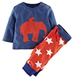 Fiream Boys Cotton Long Sleeve Clothing Sets(20052TZ,5T/5-6YRS)