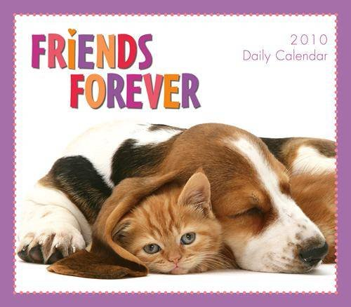 2010 Daily Desk (Friends Forever 2010 Daily Boxed Calendar)