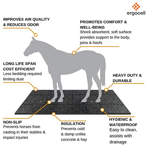 Ergocell Recycled Rubber Floor Mat – Shock Absorbent Gym Mat Flooring & Horse Stall Mat | Three Thicknesses, Multiple Sizes | 3/8'' - 2' x 4' by Ergocell (Image #7)