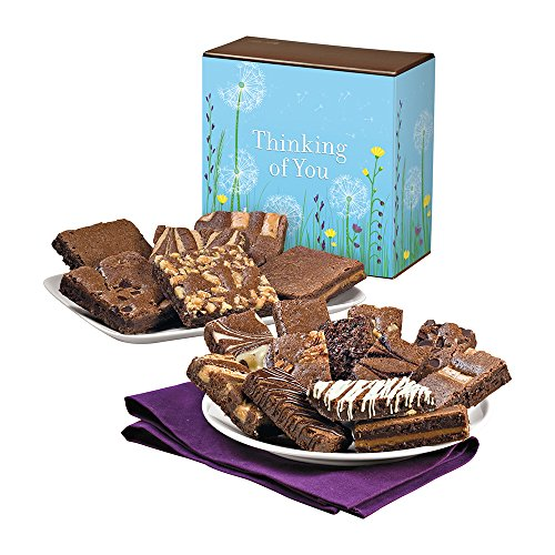 Fairytale Brownies Thinking of You Brownie & Sprite Combo Gourmet Chocolate Food Gift Basket - 3 Inch Square Full-Size and 3 Inch x 1.5 Inch Snack-Size Brownies - 18 Pieces - Item CT318