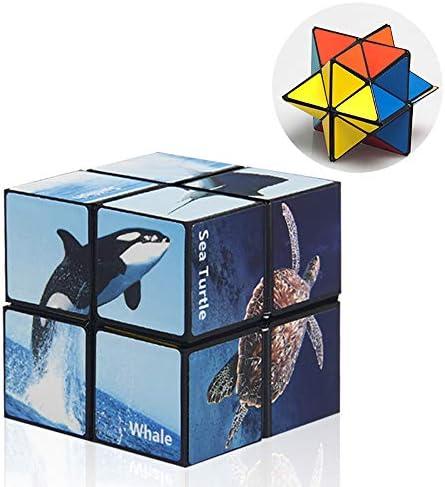 [해외]Star Cube Magic Cube 2 in 1 3D Puzzles for Adults and Kids Infinity Cube Fidget Toy Stress Anxiety Relief Magic Puzzle Cubes (Ocean Series) / Star Cube Magic Cube 2 in 1, 3D Puzzles for Adults and Kids, Infinity Cube Fidget Toy Str...