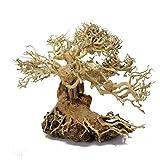 Aquarium driftwood bonsai on rock 6 inches tall (left side)