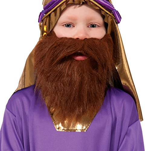 Forum Novelties Biblical Times Wiseman Child's Costume