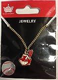 MLB Cleveland Indians  Logo Pendant Necklace