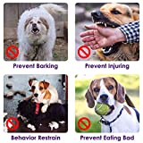 Slowton Nylon Dog Muzzle, Dog Mouth Cover