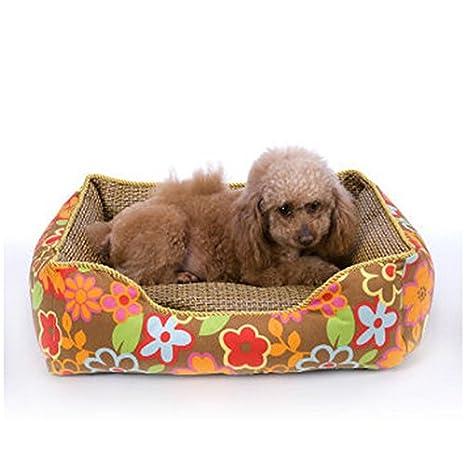 Verano Teddy tapete lavable de caña la perrera perrera artículos para mascotas camada de Perros criadero de perros pequeños Mat , S: Amazon.es: Deportes y ...