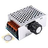 High Power 4000W 220V AC SCR Voltage Regulator Motor Speed Controller Electric Adjustable Speed Controller