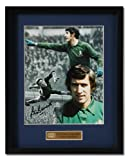 Peter Bonetti 10x8  hand signed montage (PP254)