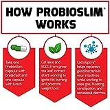 Force Factor Probioslim Probiotics + Weight Loss