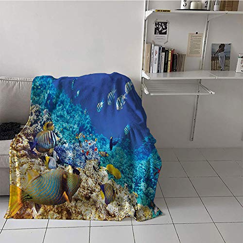 Children's blanket Lightweight Thermal Blankets (60 By 80 Inch,Ocean Decor Collection,Clear Underwater Sea Animal World with Corals and Tropical Fishes and a Starfish Egyptian Sea Print,Aqua) ()