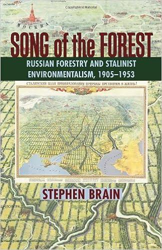 Картинки по запросу brain song of the forest