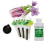 Fairy Tale Eggplant Seed Pod Kit for AeroGarden