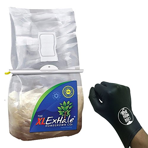 exhale xl - the original co2 bag homegrown for 6 x 6 grow rooms & tents + thcity lightning gloves