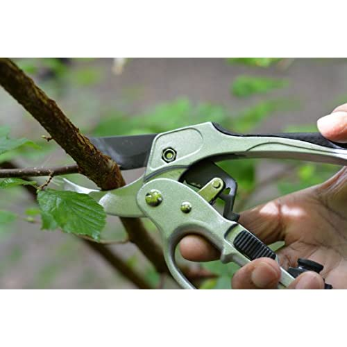durable modeling Garden Pruners Pruning Shears - Professional ...
