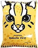 藤原製麺 福岡市動物園ラーメン とんこつ 105g×10袋