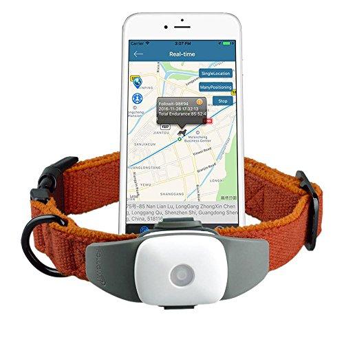 Kobwa Gps Tracker Gsm Gprs Gps Real Time Tracking Tool Pet