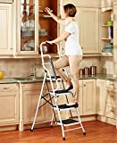 4-Step Ladder with Safety Rails