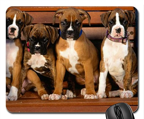 Family Boxer (A FAMILY OF BOXERS Mouse Pad, Mousepad (Dogs Mouse Pad))