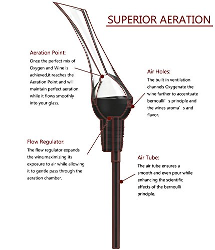 ELSKY-Wine-Aerator-Pourer-Aerating-Decanting-Spout-Premium-Liquor-Pourer-for-Red-Wine-Lovers-and-Regular-Wine-Drinkers-FDA-Approved