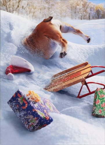 AVANTI Card Dog Stuck in Snow Bank Standout, 1 EA