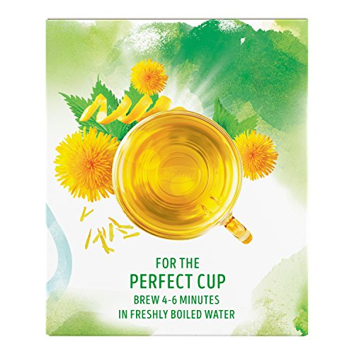 Lipton Herbal Supplement with Green Tea, Detox 15 ct, Pack of 4 by Lipton (Image #1)