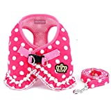SMALLLEE_LUCKY_STORE Small Dog Cat Sweet Dots Pattern Vest Harness Leash Set Mesh Padded Lead Pink S