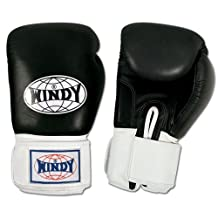 Windy Thai Style Sparring Gloves