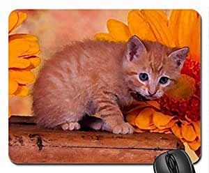 Cute kitty Mouse Pad, Mousepad (Cats Mouse Pad, 10.2 x 8.3 x 0.12 inches)