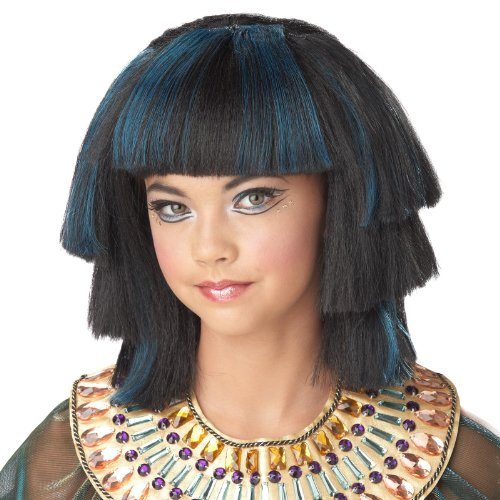 Ancient Egypt Costume And Makeup (California Costumes Egyptian Stepped Layers Wig Costume, ACC)