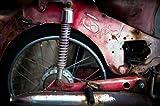 Thai Motorbike, Fine Art Photograph By: Erin Berzel; One 36x24in Fine Art Paper Giclee Print