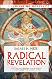 img - for Radical Revelation (Illuminating Modernity) book / textbook / text book