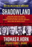 Shadowland: From Jeffrey Epstein to the Clintons, from Obama and Biden to the Occult Elite: Exposing the Deep-State Actors at War with Christianity, Donald Trump, and America's Destiny