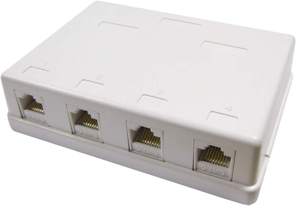 BeMatik - Caja de superficie de 4 RJ45 Cat.6 UTP: Amazon.es: Informática