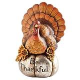 Decorative Be Thankful Turkey