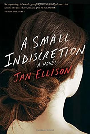 book cover of A Small Indiscretion