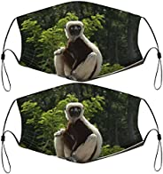 2Pcs Face Masks Reusable and Washable Protection Face Cover with Adjustable Lanyards and 4 Filters Facial Bala