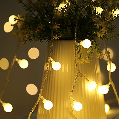 LED Globe String Light, 19.6ft 40 LED Battery & USB String Lights Waterproof for Indoor Garden Patio Landscape Home Wedding Birthday Party Decoration (Warm White)