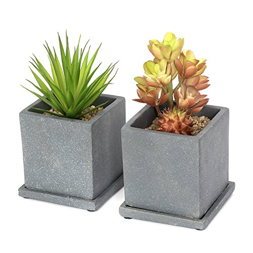 Taiyue 4 inch Country Square Cement Succulent Planter Flower Pot Cactus Planter with Removable Drip Tray, Set of 2(Darkgray) by Taiyue