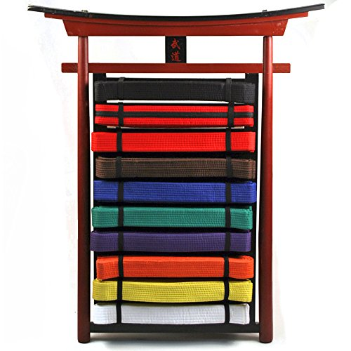 Ace Martial Arts Supply Belt Display (10 Level Wall Mountable)