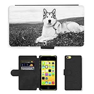 GoGoMobile PU LEATHER case coque housse smartphone Flip bag Cover protection // M00123263 Malamute de Alaska del lobo Perro Fjeld // Apple iPhone 5C