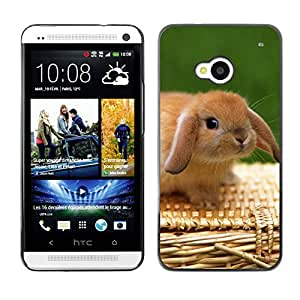 Hot Style Cell Phone PC Hard Case Cover // M00001355 Rabbits Pattern // HTC ONE M7