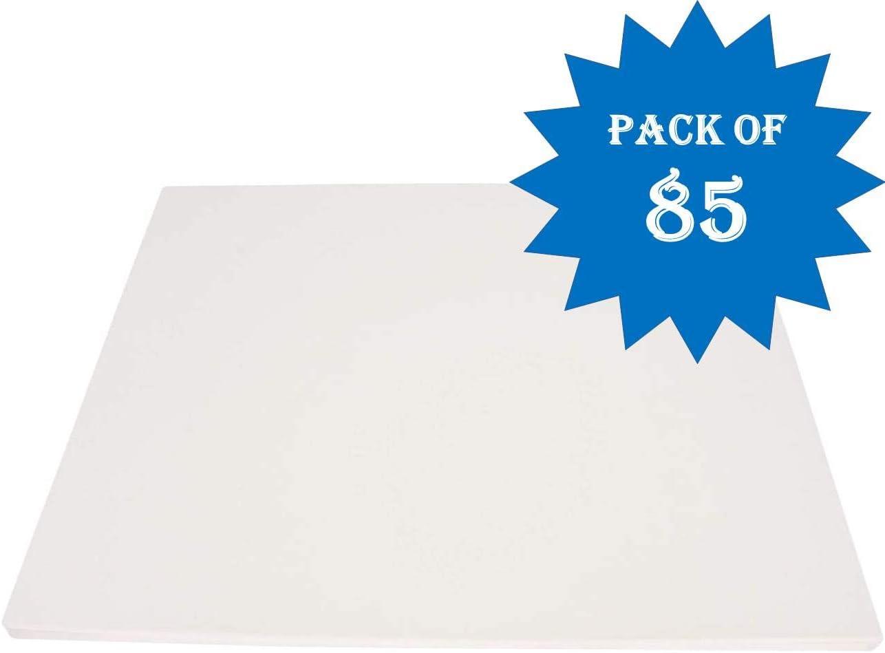 PACON Foam Board White 22 x 28 5 Sheets