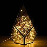 Kohree 100 Micro LEDs Christmas String Light