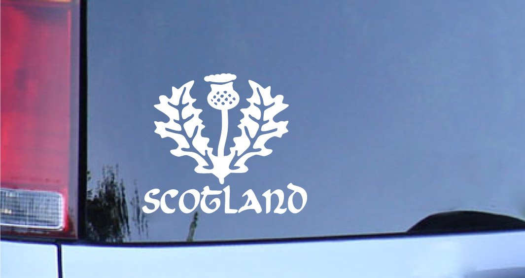 Amazon com scotland thistle vinyl decal sticker white glasgow football automotive