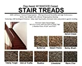 8''x24'' Dog Assist Carpet Stair Treads - WYNWOOD 50 oz. Textured Cut Pile Fleck - Set of 13 w/ 1 Roll Carpet Tape (#1 Italian Creme)