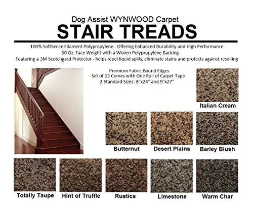 8''x24'' Dog Assist Carpet Stair Treads - WYNWOOD 50 oz. Textured Cut Pile Fleck - Set of 13 w/ 1 Roll Carpet Tape (#1 Italian Creme) by Koeckritz Rugs