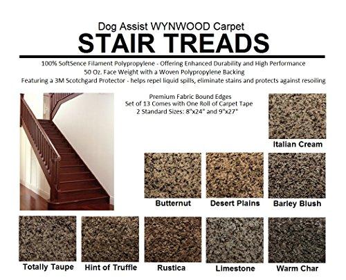 8''x24'' Dog Assist Carpet Stair Treads - WYNWOOD 50 oz. Textured Cut Pile Fleck - Set of 13 w/ 1 Roll Carpet Tape (#1 Italian Creme) by Koeckritz Rugs