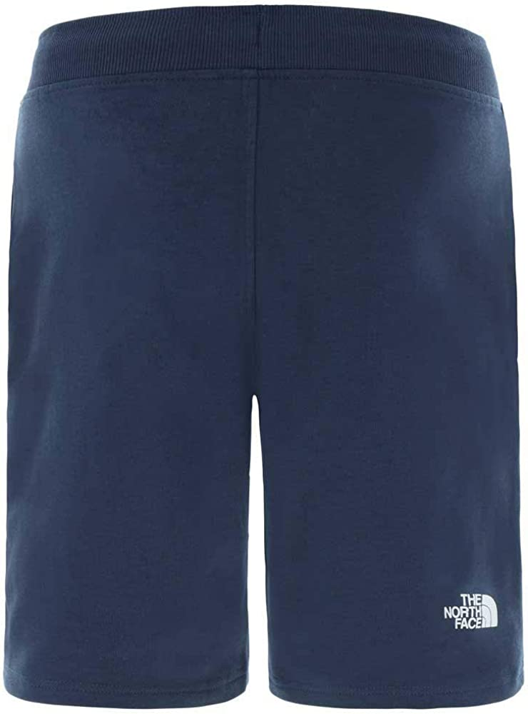 THE NORTH FACE Mens Standard Shorts