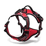 Chai's Choice Best Outdoor Adventure Dog Harness (X-Small, Red)